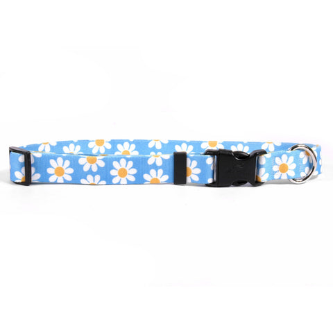 Yellow Dog - Blue Daisy Collar