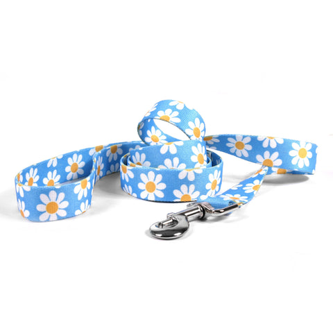 Yellow Dog - Blue Daisy Leash