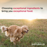 Diamond Naturals® Adult Dog Biscuits with Chicken Meal 16 Oz