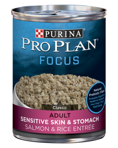 Pro Plan FOCUS Adult Sensitive Skin & Stomach Salmon & Rice Entrée Wet Dog Food