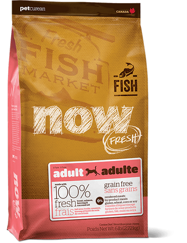 Now! Grain Free Fish Recipe for Adult Dogs
