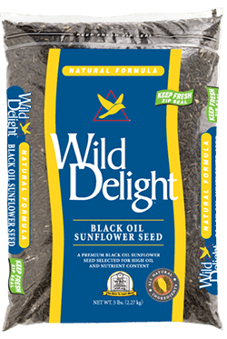 Wild Delights Black Oil Sunflower Seed