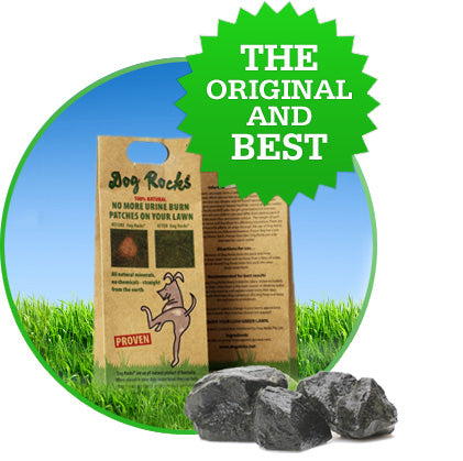 Dog Rocks® - Let your dog save your lawn!