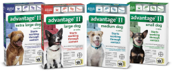 Bayer Advantage®  II for dogs