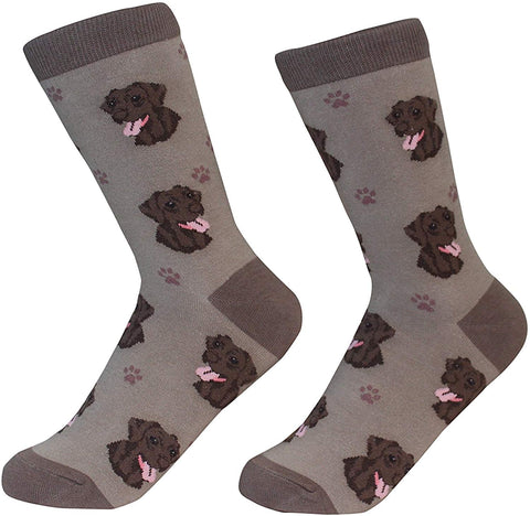 Sock Daddy Breed Socks, Chocolate Labrador
