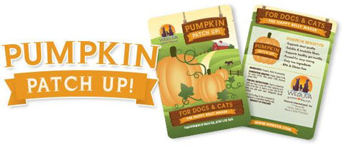 Weruva Pumpkin Patch Up! Pumpkin Supplement for Dogs & Cats