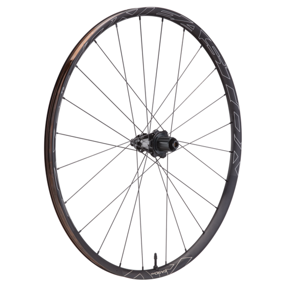 EA90 AX Disc Wheelsets