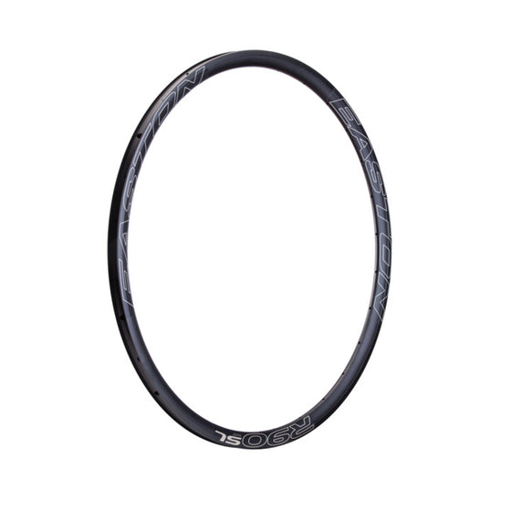 R90 SL DISC Rims