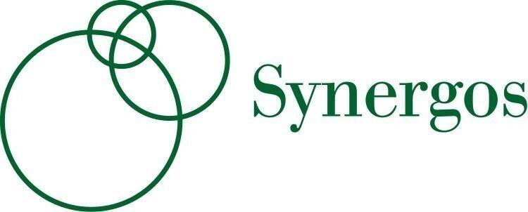 The Synergos Institute logo