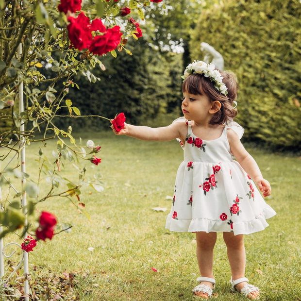 "Wish + Wonder ""Isabella"" Embroidered Floral Dress 