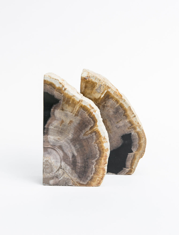 Petrified Wood Bookend - Set of 2
