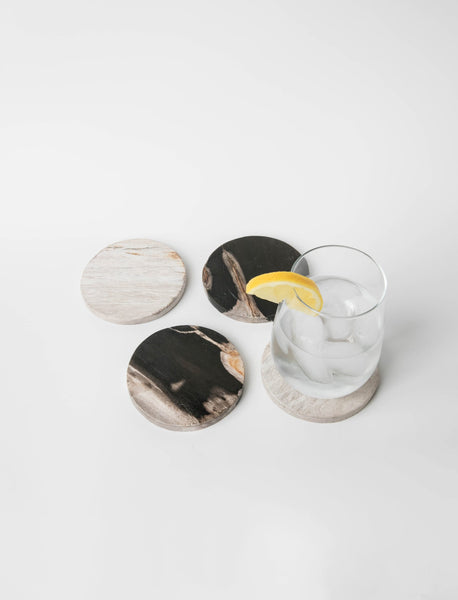 Petrified Wood Coaster Set