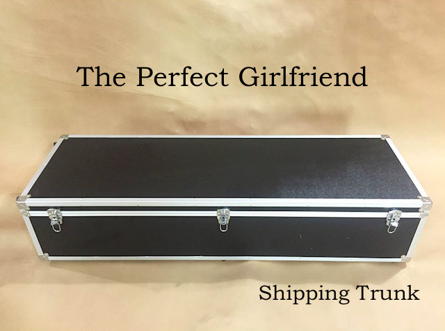 Storage Trunk - The Perfect Girlfriend - American Sex Doll - United States
