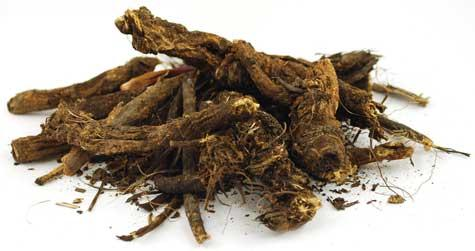 Golden Seal Root Cut 1oz  (hydrastis Canadensis)