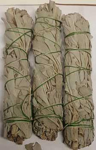 White Sage Smudge Stick 3pk 3""
