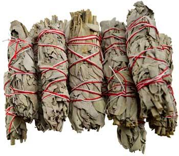 White Sage Smudge Stick 12pk 3 1-2