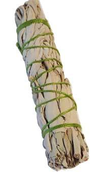 California White Sage Smudge Stick 3