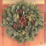 Handmade Willow Pentagram wall hanging