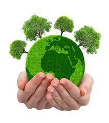 Green healthy earth world with trees sitting inside cupped hands