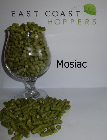 Mosiac - East Coast Hoppers
