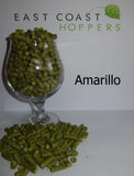 Amarillo - East Coast Hoppers