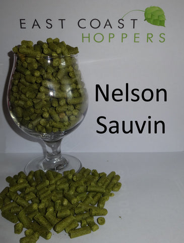 Nelson Sauvin - 1lb (454g) - East Coast Hoppers