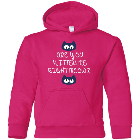 Image of Sweatshirts - Kitten Meow Youth Pullover Hoodie
