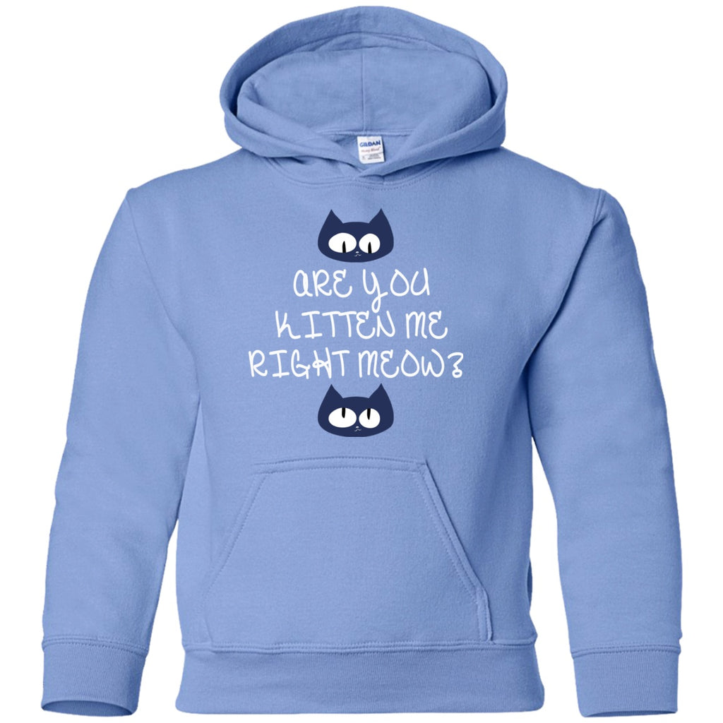 Sweatshirts - Kitten Meow Youth Pullover Hoodie