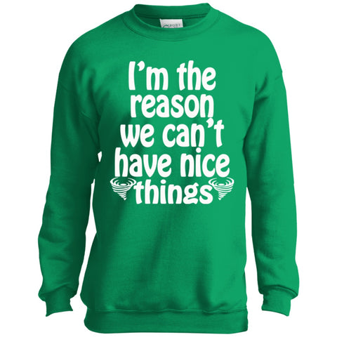 Image of Sweatshirts - Nice Things Youth Crewneck Sweatshirt