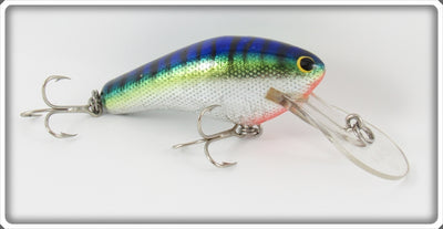 Bagley Hot Blue Chartreuse On Silver Diving Killer B II Lure