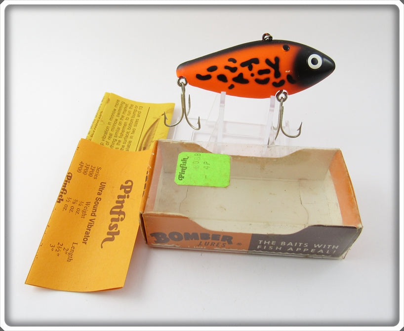 Bomber Orange Black Coachdog Pinfish In Box