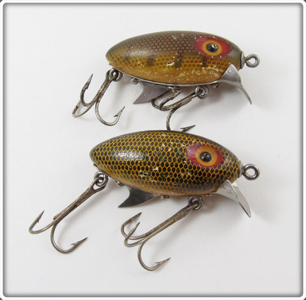 Clark's Perch Water Scout Pair