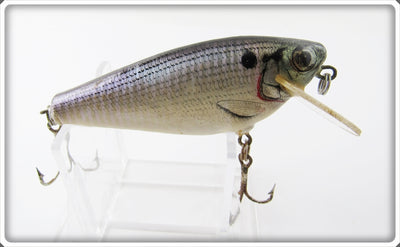 Vintage Bagley Shad Small Fry Lure