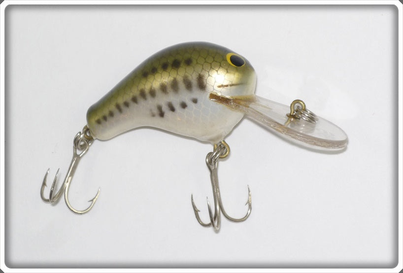 Bagley Killer B 1 Sink N Swim Little Bass On White