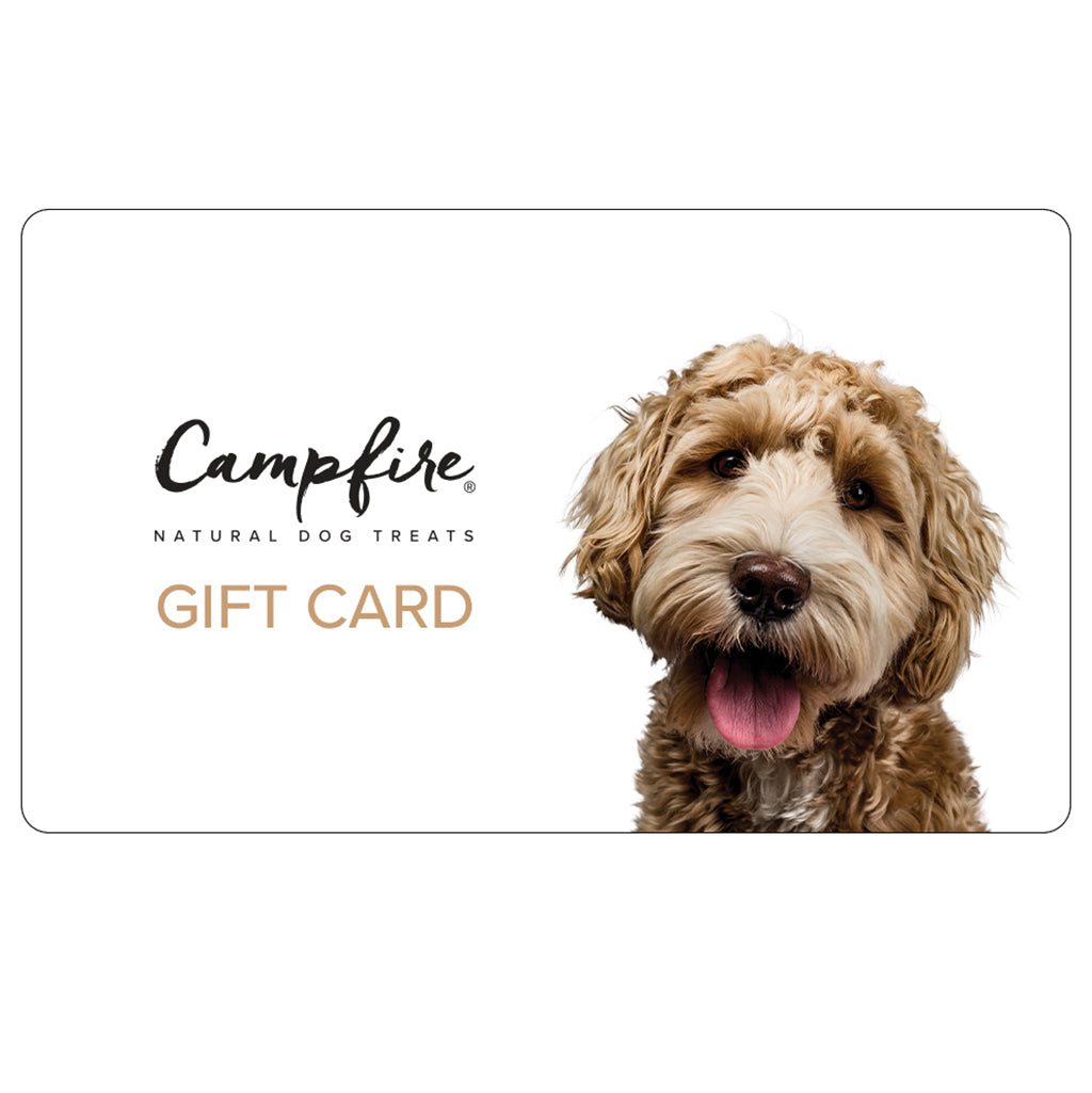 Campfire Treats E-Gift Card for Dog Lovers