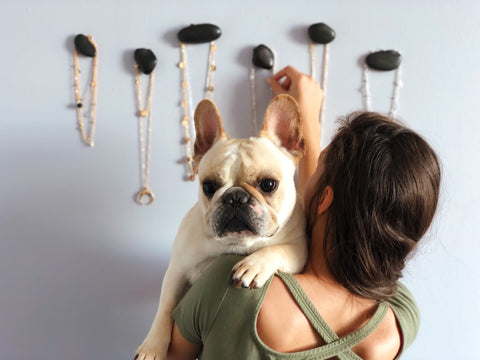 Radar Jewelry - DIY Affordable Jewelry Organizer, French Bulldog Approved