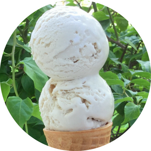 Vegan Vanilla Dream Ice Cream