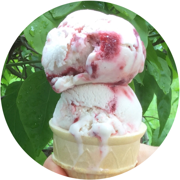 Vegan Lemon Berry Swirl Ice Cream 1 L tub