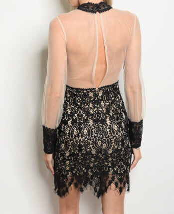 Mesh and Lace Dress