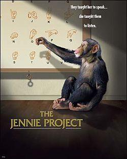The Jennie Project
