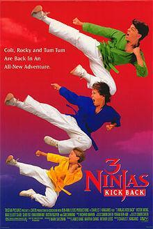 3 Ninjas Kick Back movie dvd