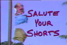 Salute your Shorts complete series Nickelodeon Series dvd