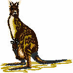 Aussie Animals - personalised gifts