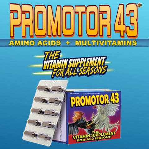 Promotor 43 Amino Acid + Multivitamins (100 Tablets)