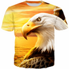 USA EAGLE SUNSET T-SHIRT