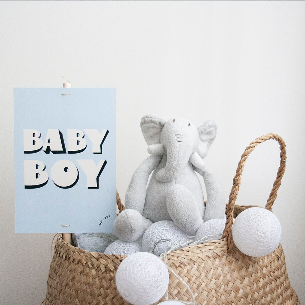 Baby Gender Reveal Placard - Boy