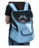 Pet Carrier P63