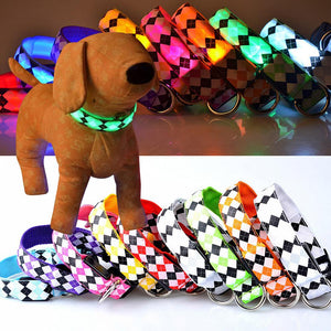 Dog Collars Colorful LED Night Safety