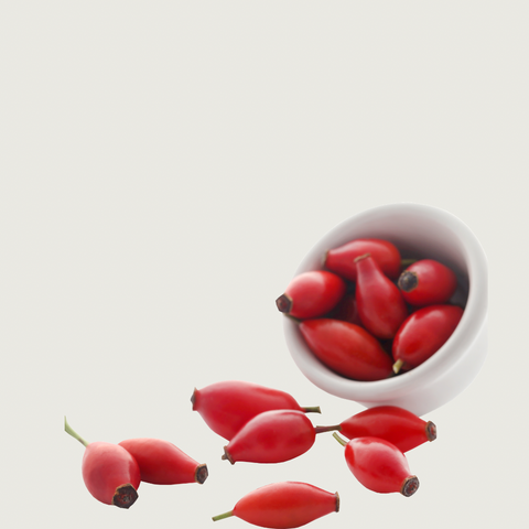 Rose-Hip-Seed-Oil-Love-Absolute