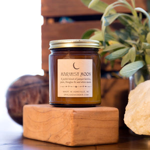 OAW - Big Sur Candle - $18
